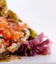 tartar salmon6